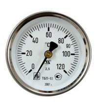 Термометр ТБП 100/100/ТЗ-(0-120)С